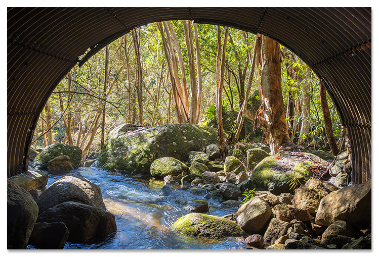 Landscape Photography Cairns Dominic Chaplin Pine Creek Pictures