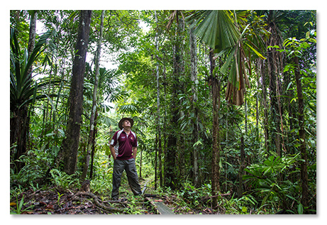 Travel Photography Cairns Dominic Chaplin Pine Creek Pictures